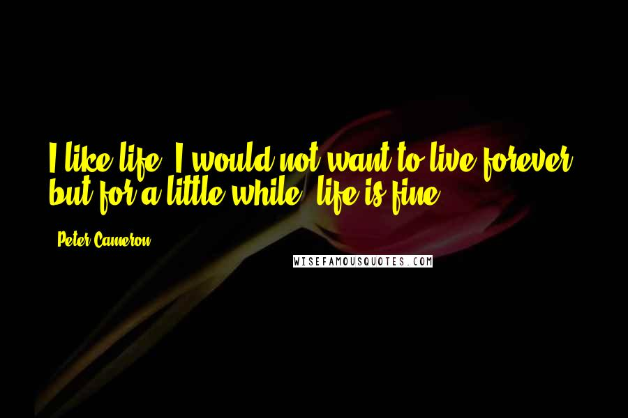Peter Cameron quotes: I like life. I would not want to live forever, but for a little while, life is fine.
