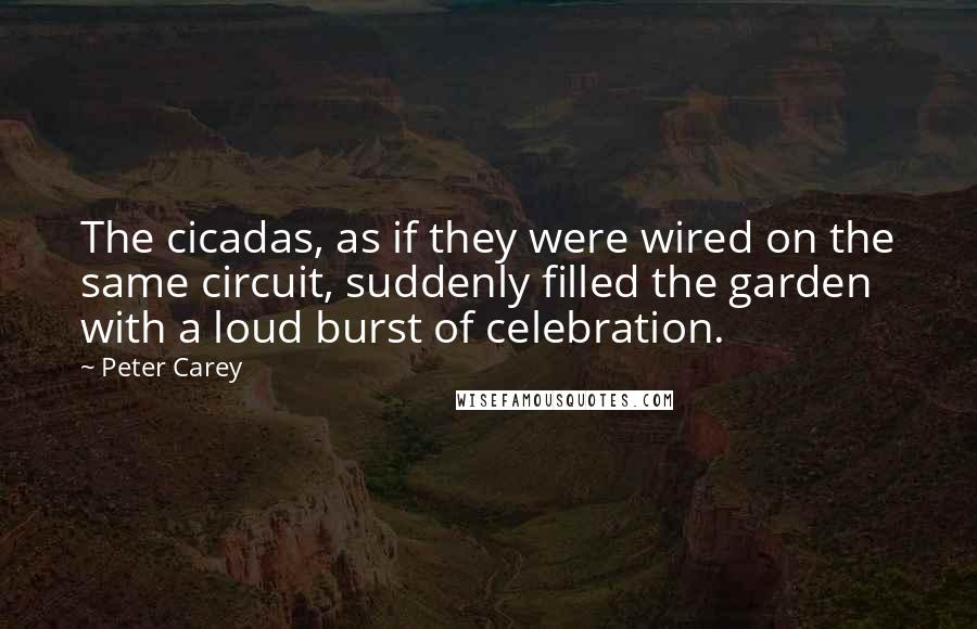Peter Carey quotes: The cicadas, as if they were wired on the same circuit, suddenly filled the garden with a loud burst of celebration.