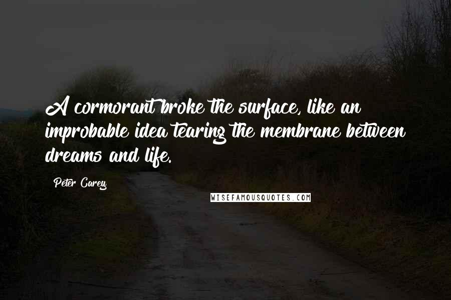 Peter Carey quotes: A cormorant broke the surface, like an improbable idea tearing the membrane between dreams and life.