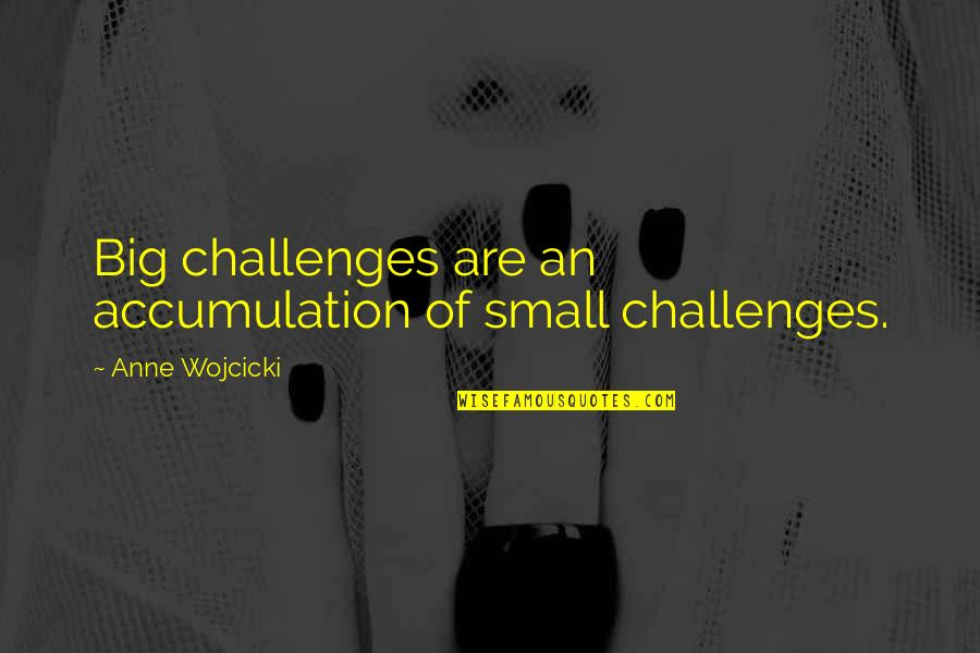 Peter Disciple Quotes By Anne Wojcicki: Big challenges are an accumulation of small challenges.
