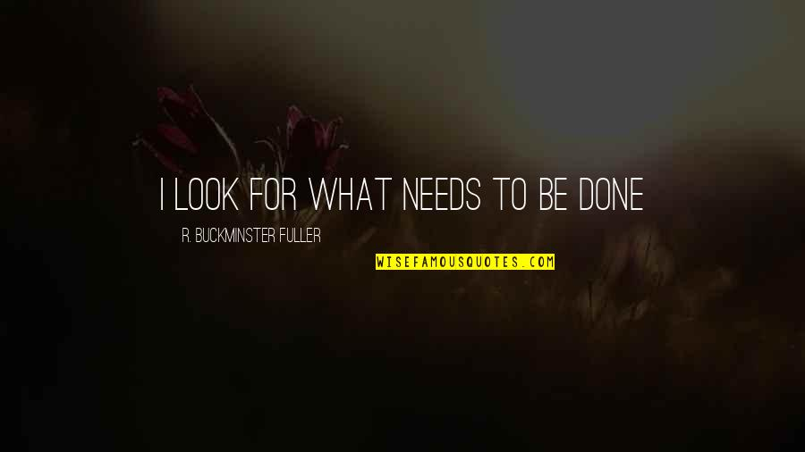 Peter Lustig Quotes By R. Buckminster Fuller: I look for what needs to be done