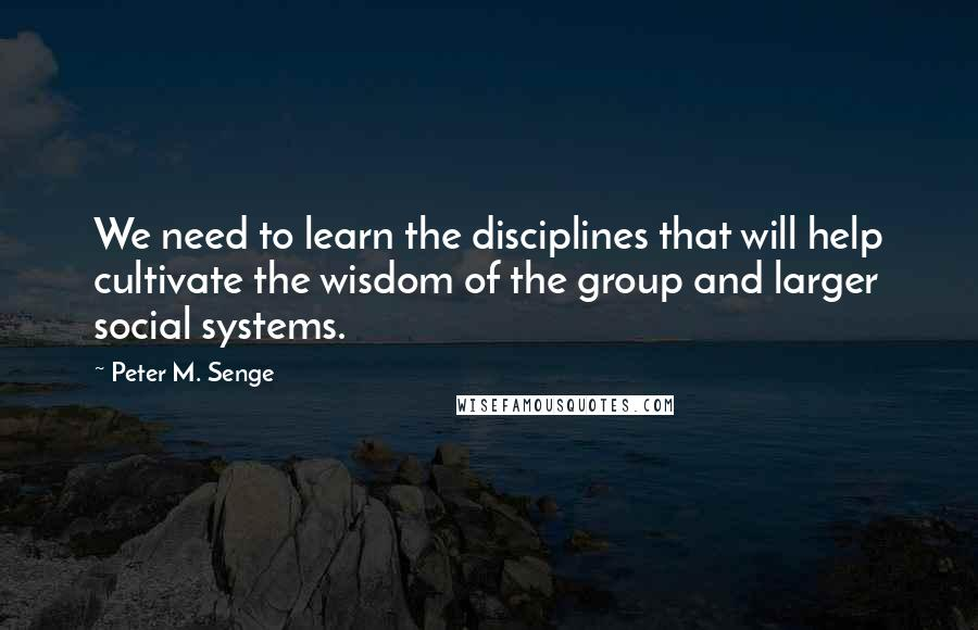 Peter M. Senge quotes: We need to learn the disciplines that will help cultivate the wisdom of the group and larger social systems.