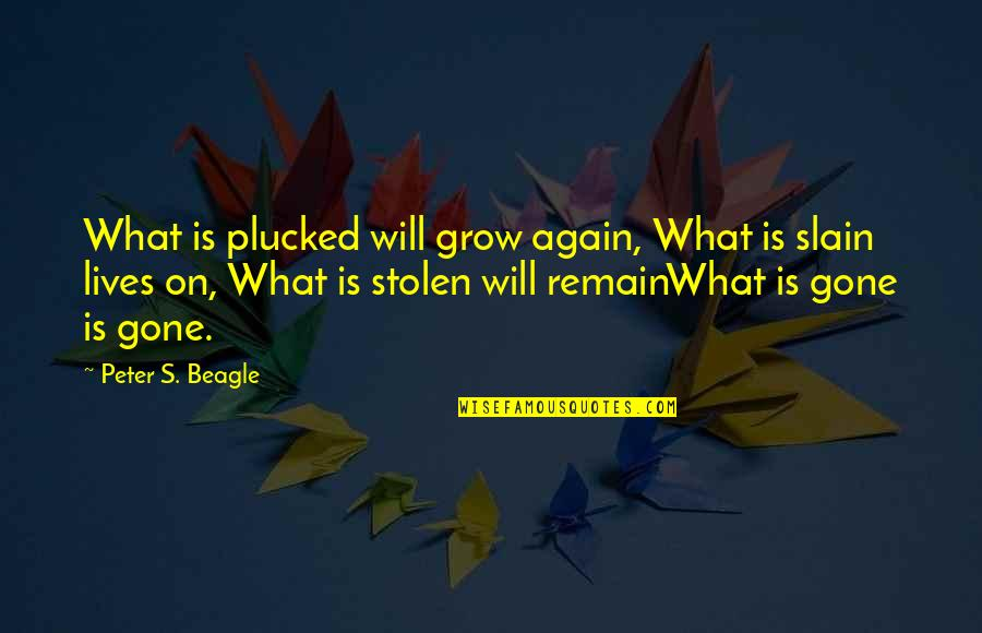 Peter S Beagle Quotes By Peter S. Beagle: What is plucked will grow again, What is