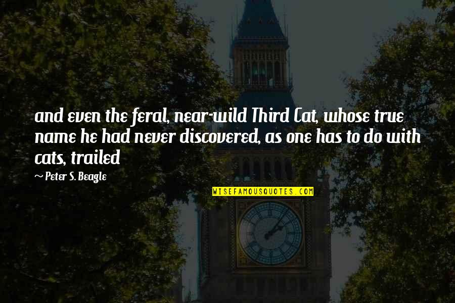 Peter S Beagle Quotes By Peter S. Beagle: and even the feral, near-wild Third Cat, whose