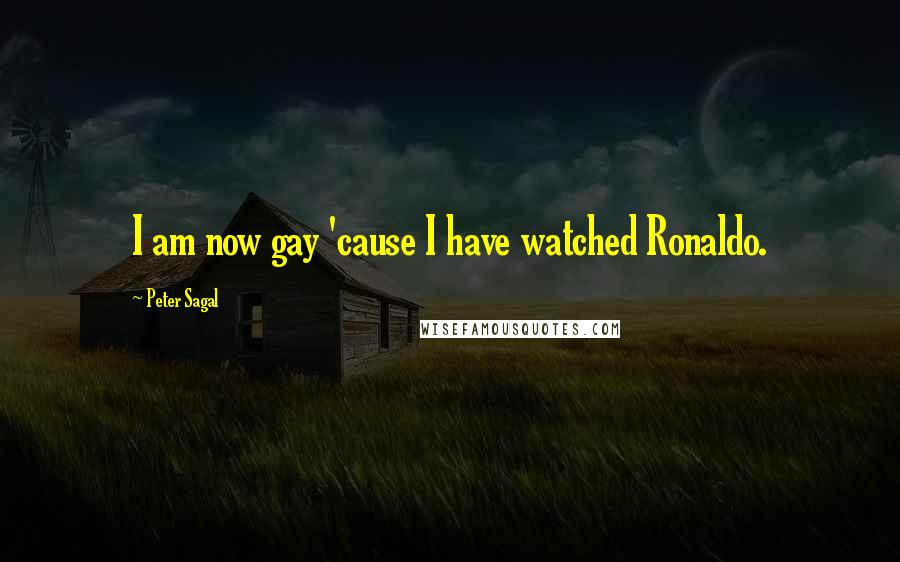 Peter Sagal quotes: I am now gay 'cause I have watched Ronaldo.