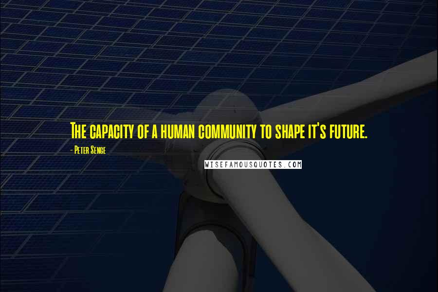 Peter Senge quotes: The capacity of a human community to shape it's future.