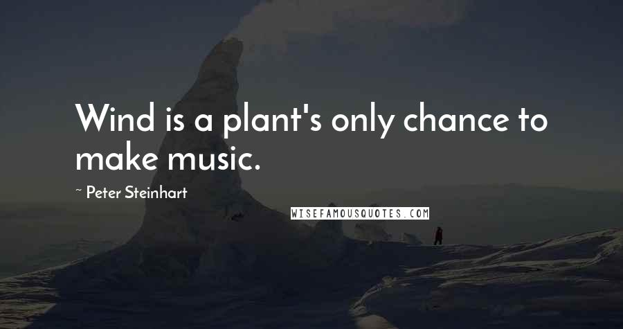 Peter Steinhart quotes: Wind is a plant's only chance to make music.