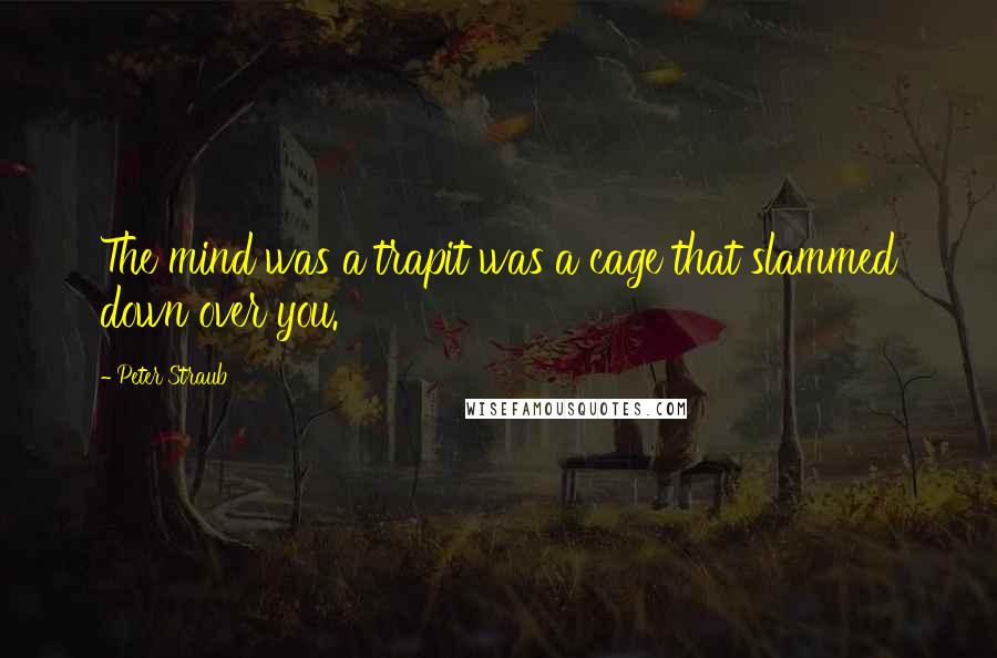 Peter Straub quotes: The mind was a trapit was a cage that slammed down over you.