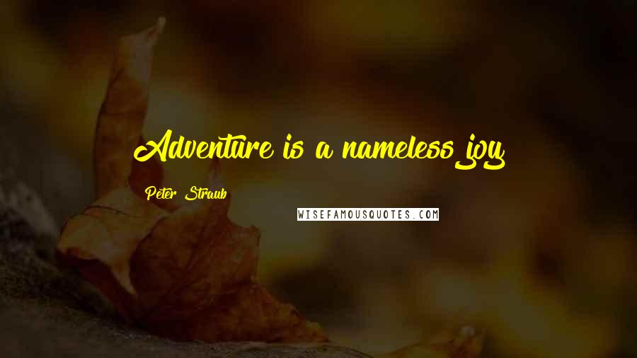 Peter Straub quotes: Adventure is a nameless joy