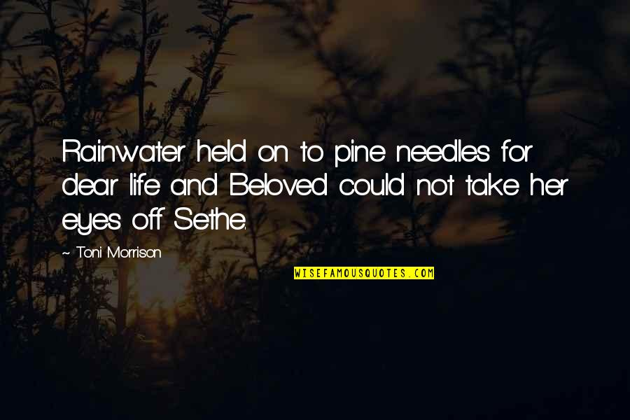 Phlogiston Quotes By Toni Morrison: Rainwater held on to pine needles for dear