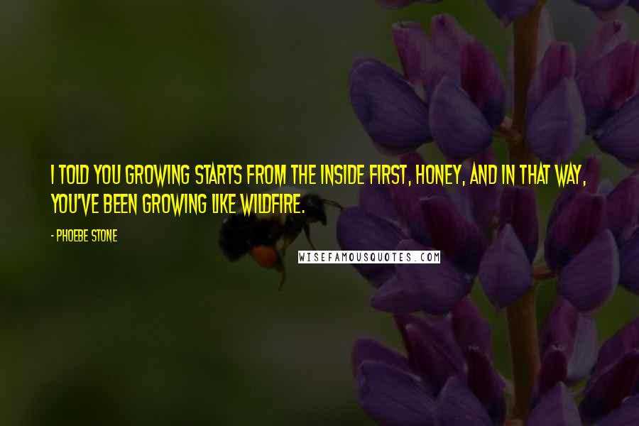 Phoebe Stone quotes: I told you growing starts from the inside first, honey, and in that way, you've been growing like wildfire.