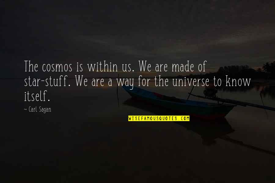 Physics And Life Quotes By Carl Sagan: The cosmos is within us. We are made