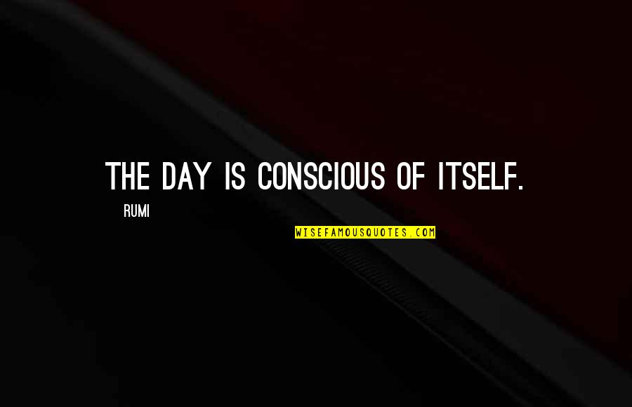 Physiological Needs Quotes By Rumi: The day is conscious of itself.