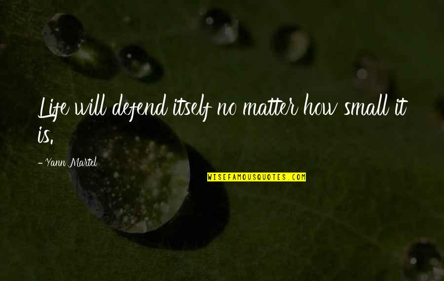 Pi In Life Of Pi Quotes By Yann Martel: Life will defend itself no matter how small