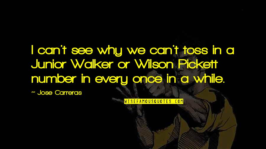 Pickett's Quotes By Jose Carreras: I can't see why we can't toss in