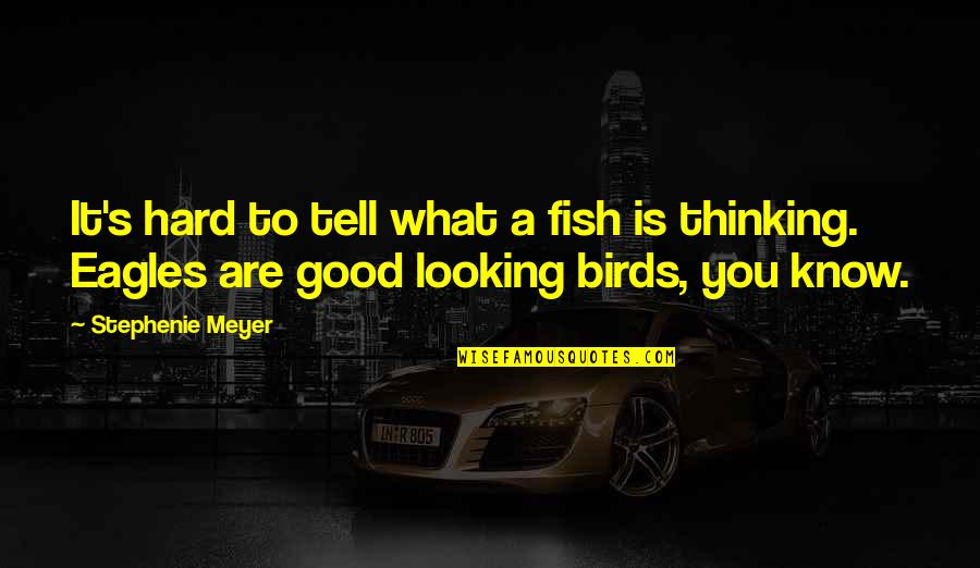 Picking Back Up Quotes By Stephenie Meyer: It's hard to tell what a fish is