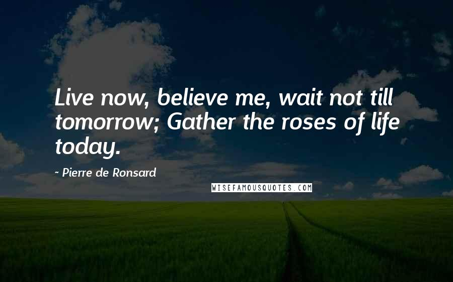 Pierre De Ronsard quotes: Live now, believe me, wait not till tomorrow; Gather the roses of life today.
