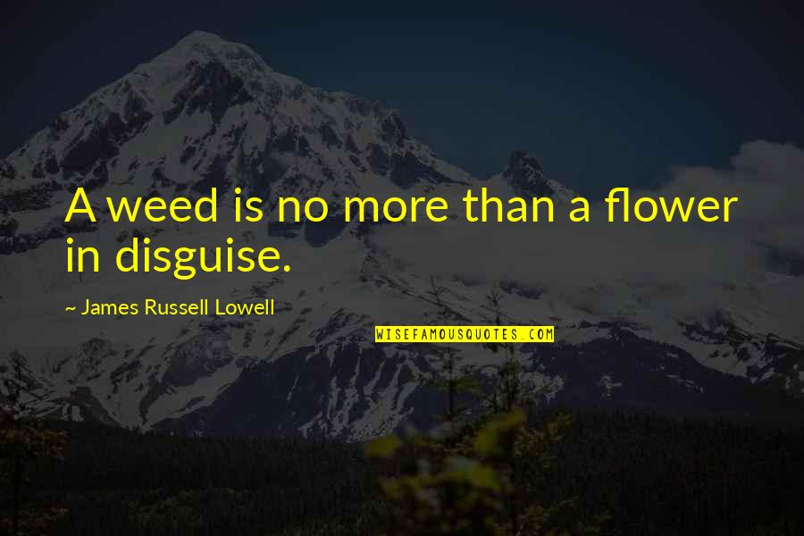 Pierre Dupont Quotes By James Russell Lowell: A weed is no more than a flower