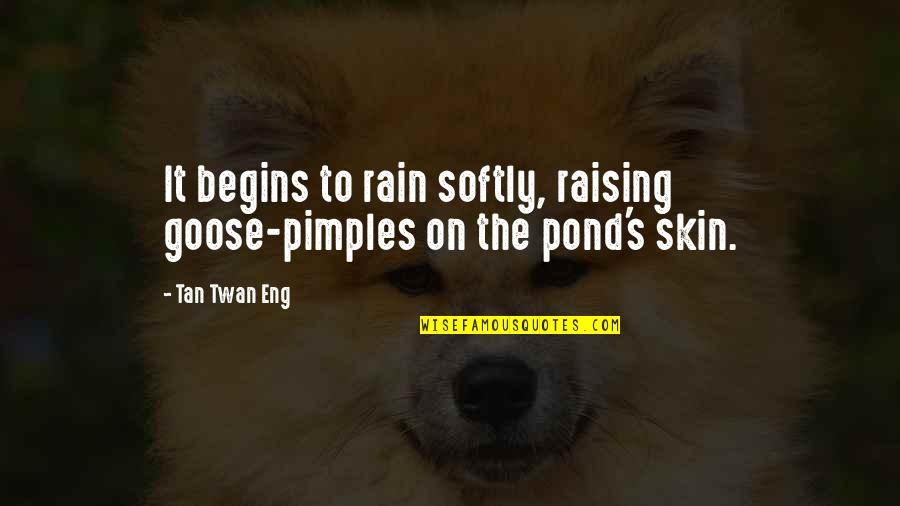 Pimples Quotes By Tan Twan Eng: It begins to rain softly, raising goose-pimples on