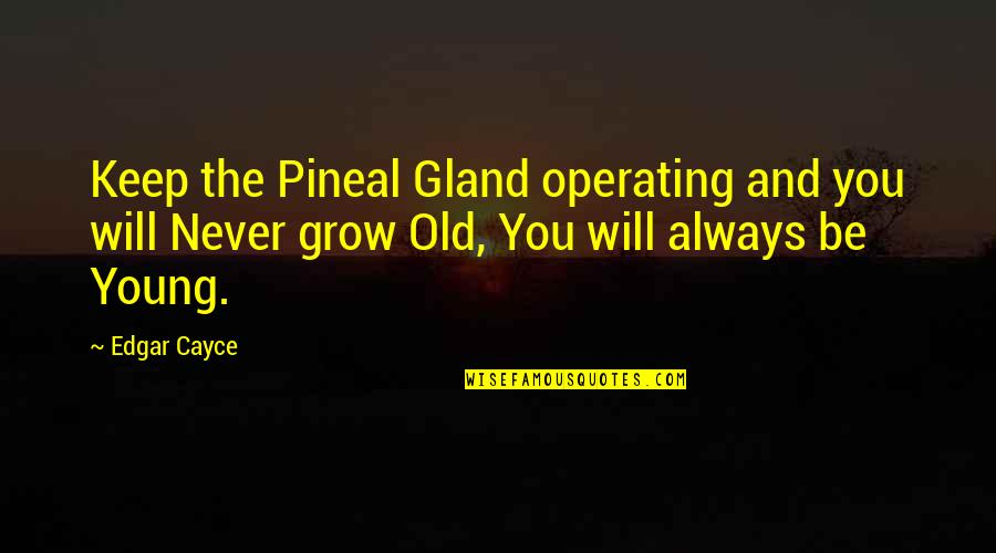 Pineal Gland Quotes By Edgar Cayce: Keep the Pineal Gland operating and you will