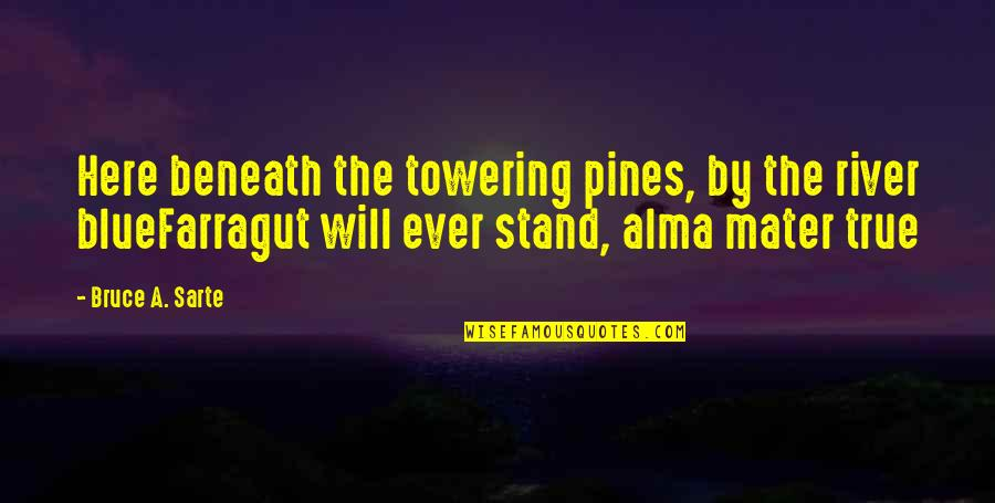 Pines Quotes By Bruce A. Sarte: Here beneath the towering pines, by the river