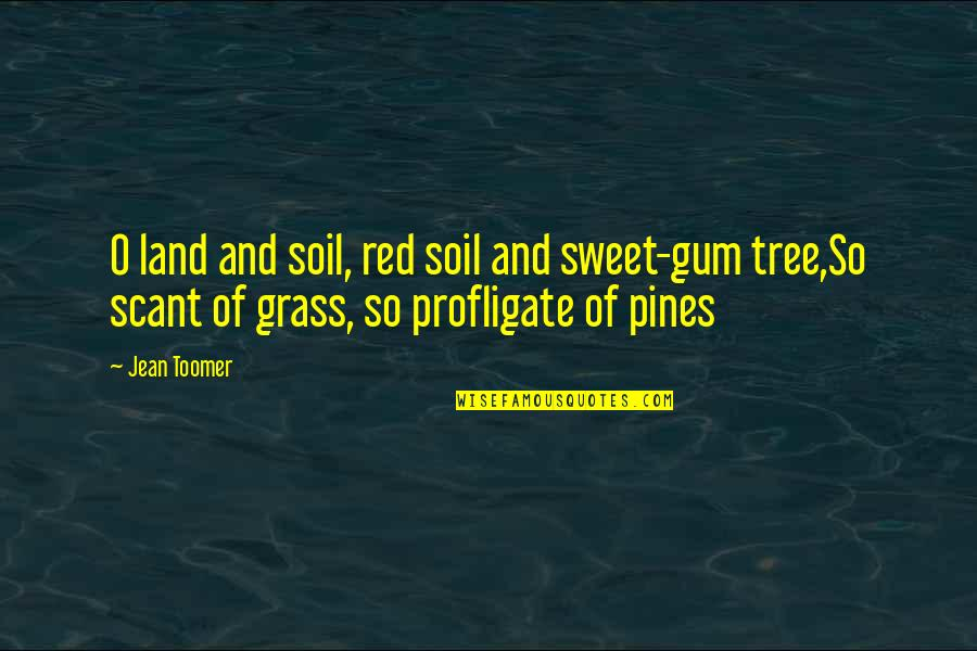 Pines Quotes By Jean Toomer: O land and soil, red soil and sweet-gum