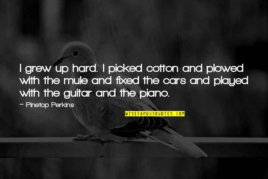 Pinetop Perkins Quotes By Pinetop Perkins: I grew up hard. I picked cotton and