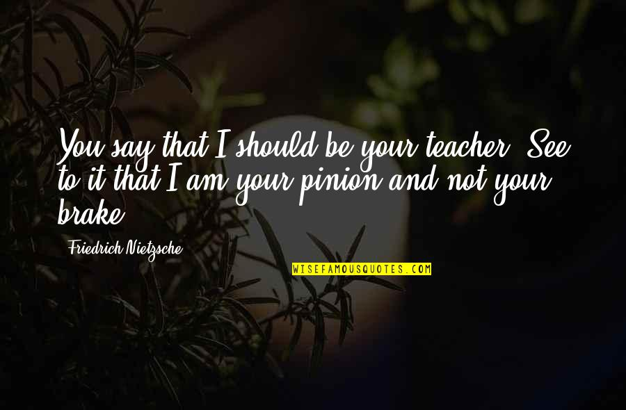 Pinion Quotes By Friedrich Nietzsche: You say that I should be your teacher!
