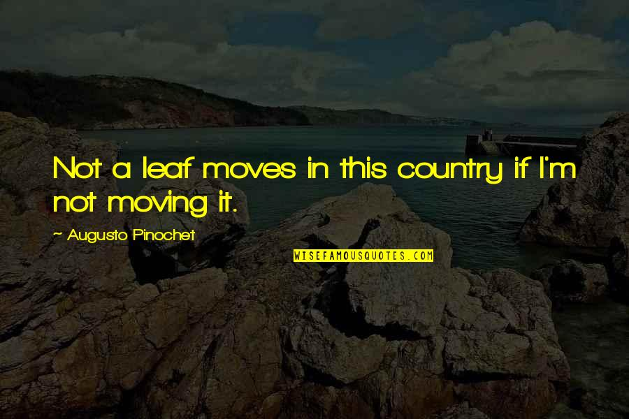 Pinochet Quotes By Augusto Pinochet: Not a leaf moves in this country if