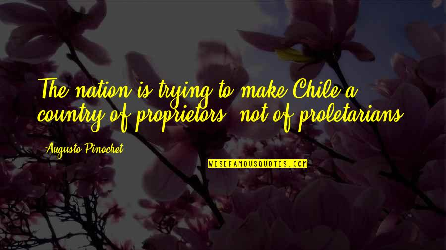 Pinochet Quotes By Augusto Pinochet: The nation is trying to make Chile a