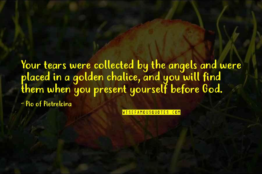 Pio Pietrelcina Quotes By Pio Of Pietrelcina: Your tears were collected by the angels and