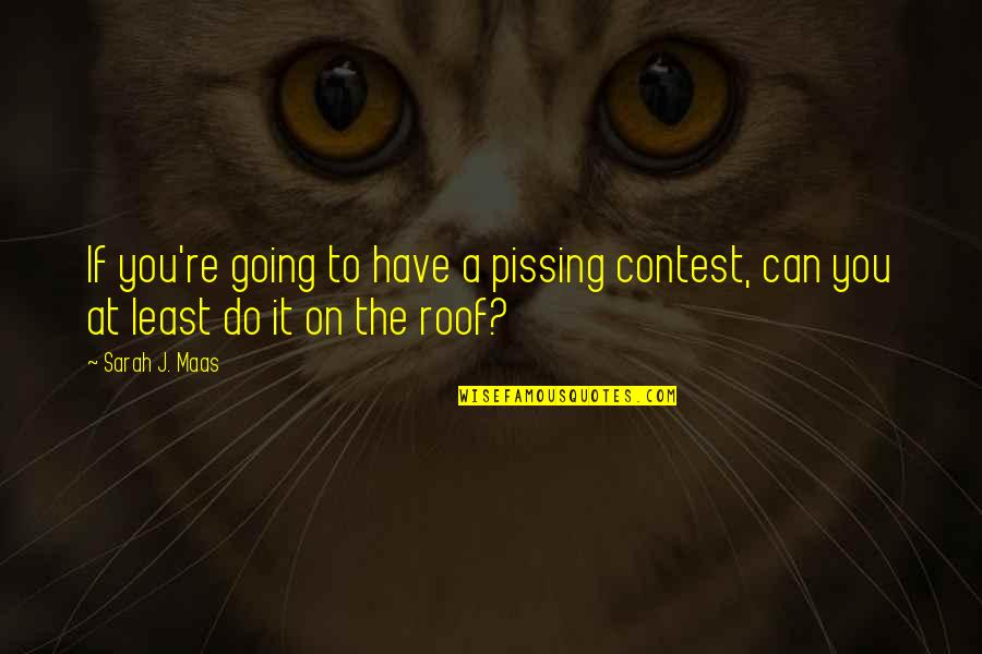 Pissing Contest Quotes By Sarah J. Maas: If you're going to have a pissing contest,