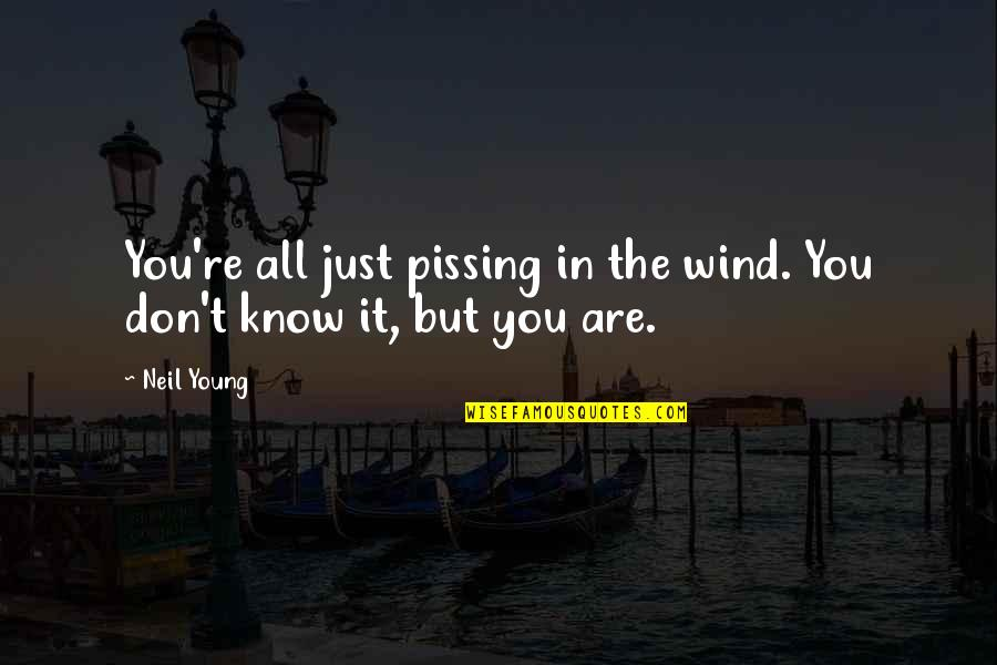 Pissing Quotes By Neil Young: You're all just pissing in the wind. You