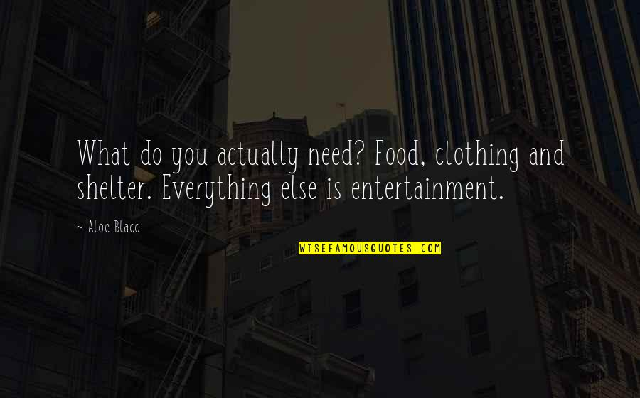 Pitbull Dogs Quotes By Aloe Blacc: What do you actually need? Food, clothing and