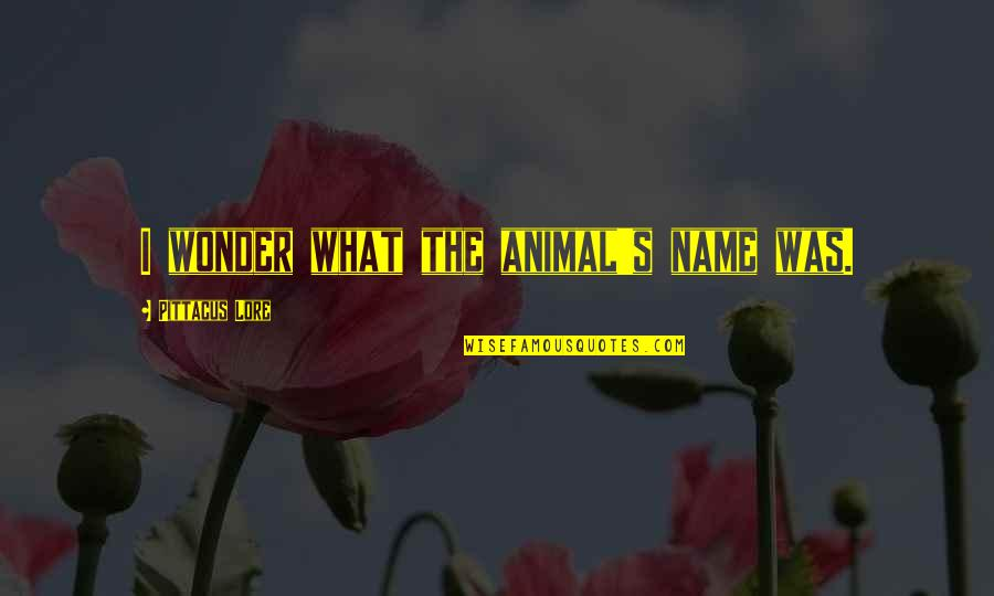 Pittacus Quotes By Pittacus Lore: I wonder what the animal's name was.