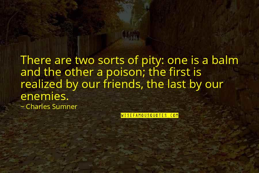 Pity No One Quotes By Charles Sumner: There are two sorts of pity: one is