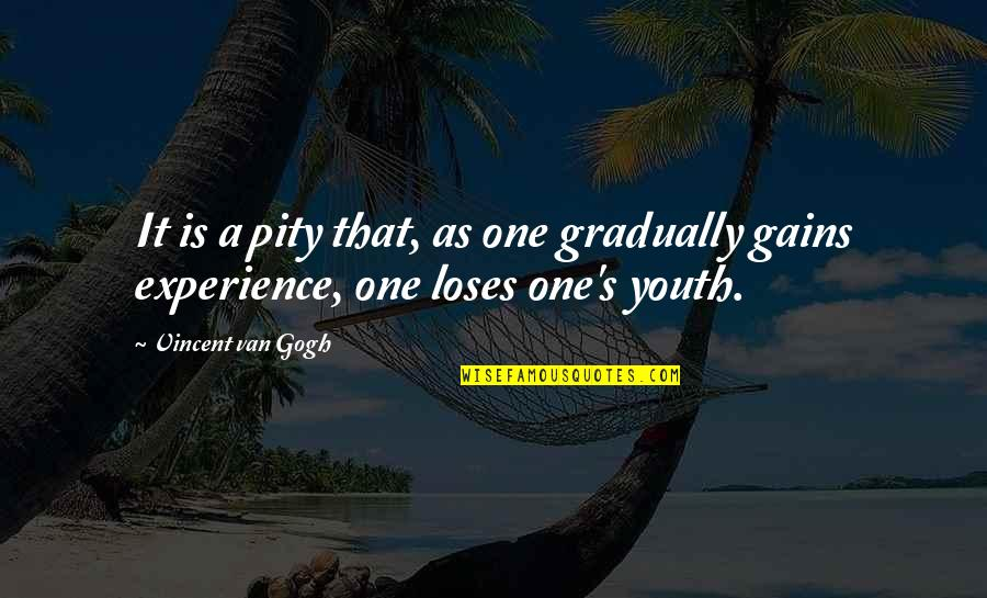 Pity No One Quotes By Vincent Van Gogh: It is a pity that, as one gradually