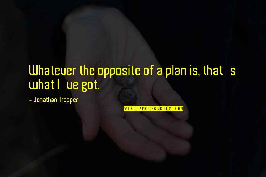 Plan A And B Quotes By Jonathan Tropper: Whatever the opposite of a plan is, that's