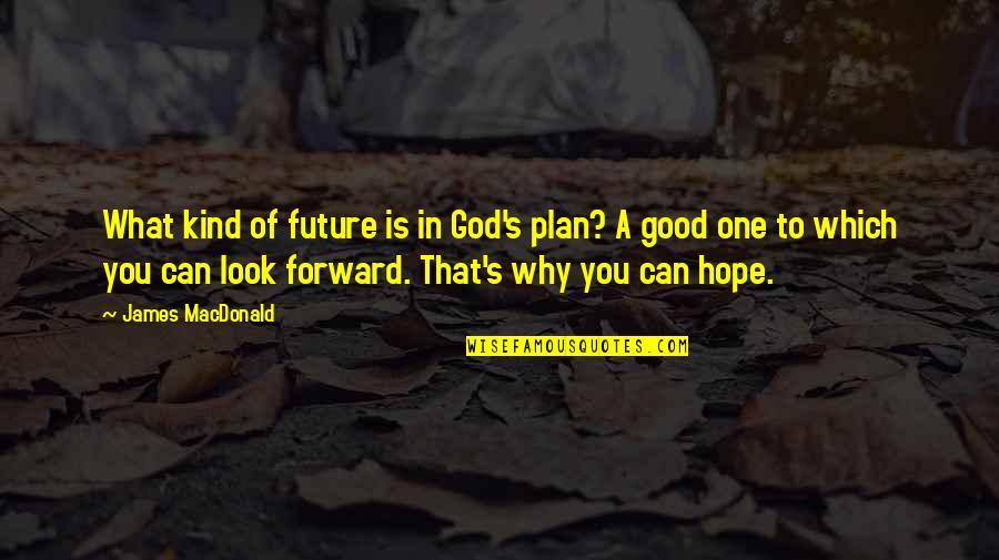 Plan For Your Future Quotes By James MacDonald: What kind of future is in God's plan?