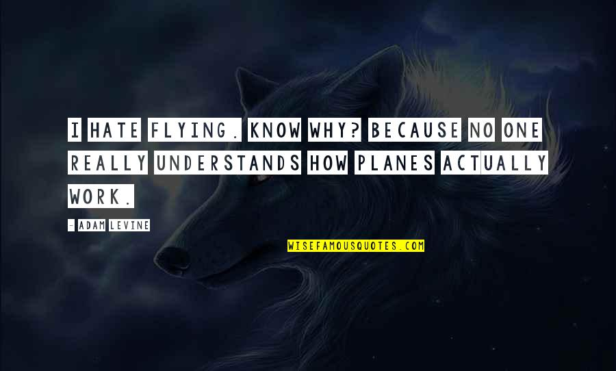Planes Flying Quotes By Adam Levine: I hate flying. Know why? Because no one
