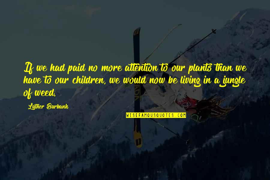 Plants And Children Quotes By Luther Burbank: If we had paid no more attention to