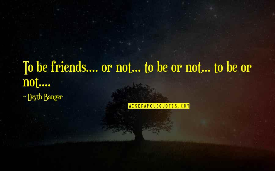 Plasterboard Quotes By Deyth Banger: To be friends.... or not... to be or