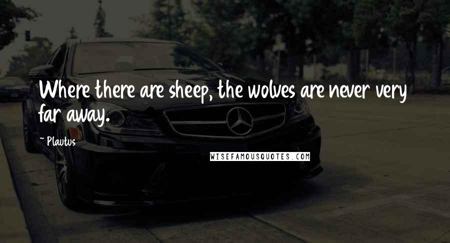 Plautus quotes: Where there are sheep, the wolves are never very far away.