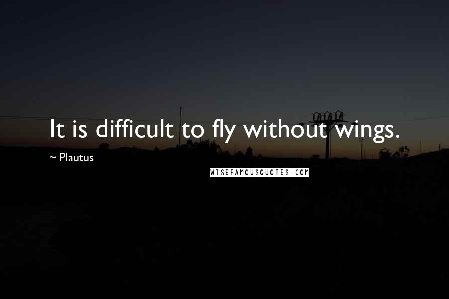 Plautus quotes: It is difficult to fly without wings.