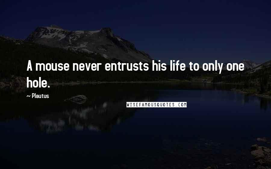 Plautus quotes: A mouse never entrusts his life to only one hole.