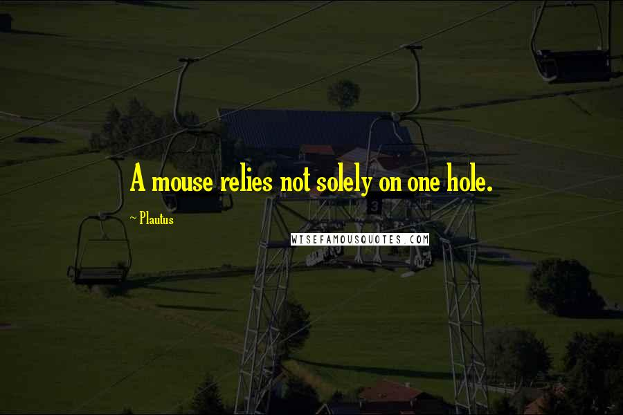 Plautus quotes: A mouse relies not solely on one hole.