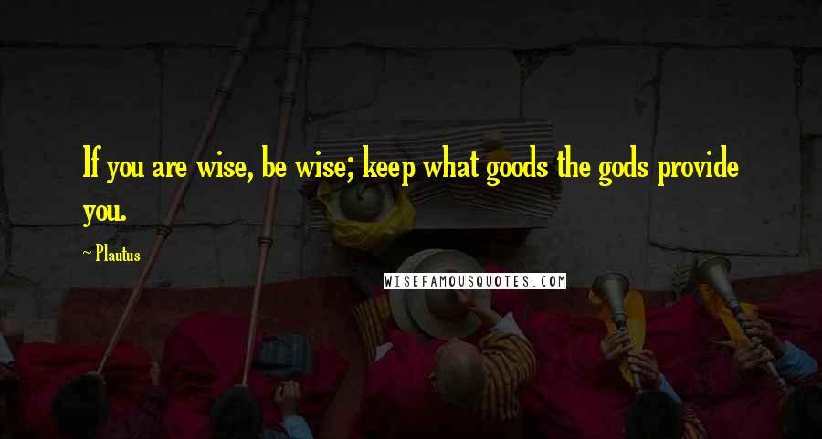 Plautus quotes: If you are wise, be wise; keep what goods the gods provide you.