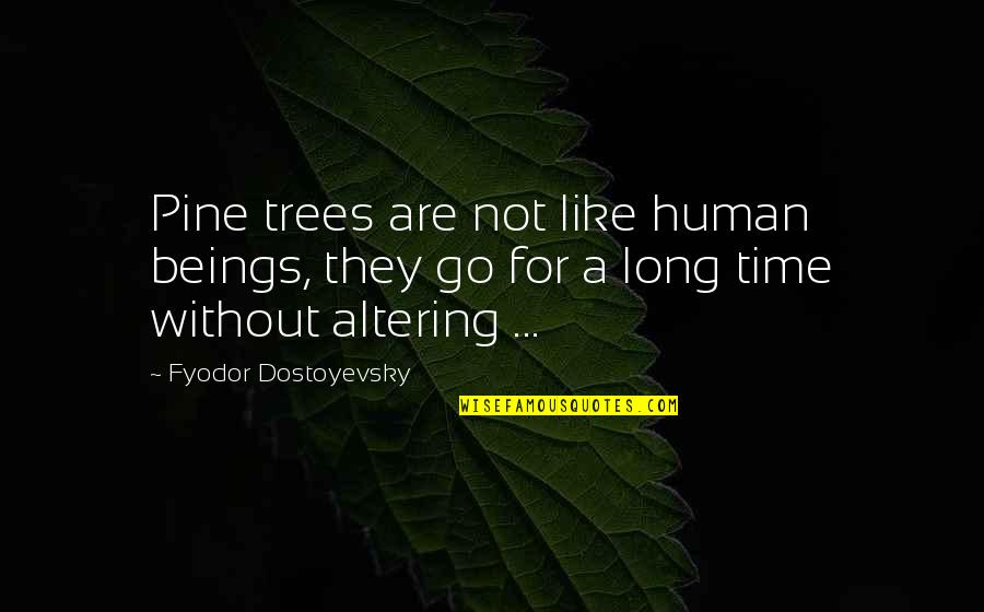 Playmaker Quotes By Fyodor Dostoyevsky: Pine trees are not like human beings, they