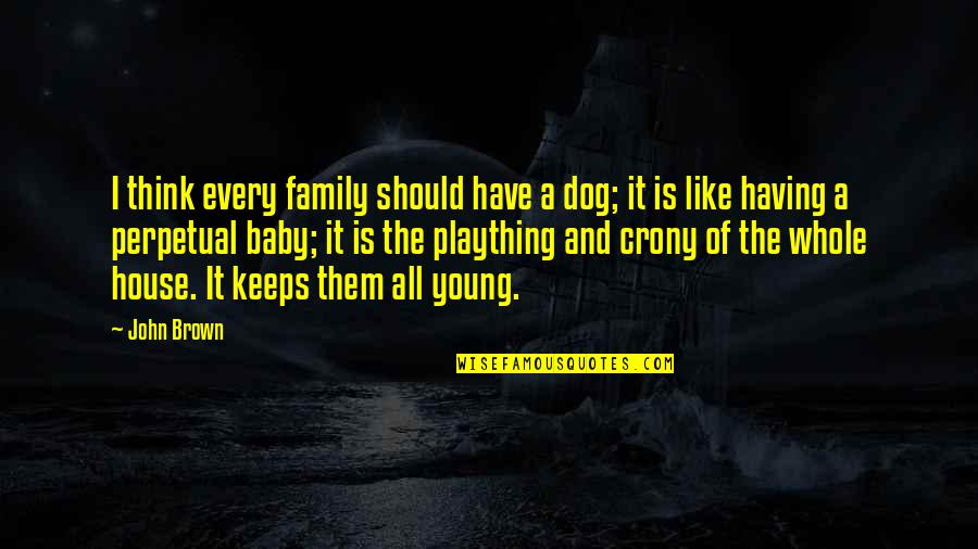 Plaything Quotes By John Brown: I think every family should have a dog;
