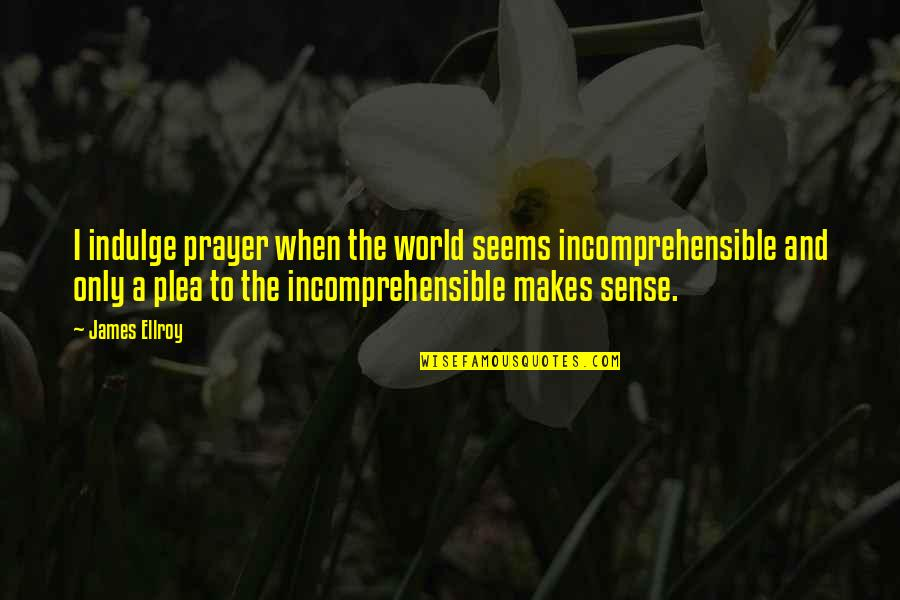 Plea Quotes By James Ellroy: I indulge prayer when the world seems incomprehensible